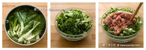 chinese_cabbage_pot_sticker_step_02