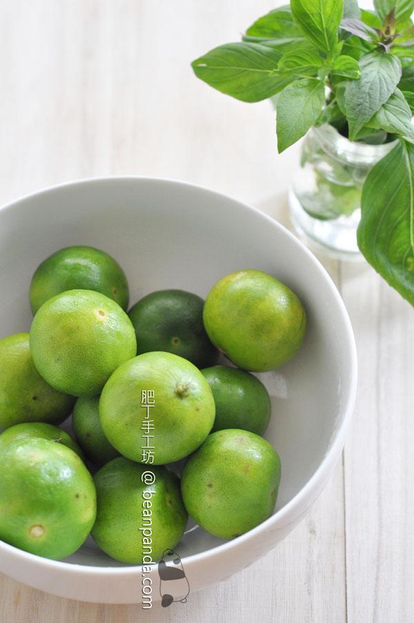 salted_lemon_04