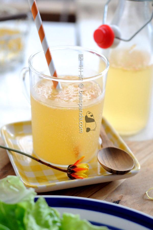自製有氣果汁 利用酵母力量 在家做無添加汽水 Homemade Soft Drinks Recipe
