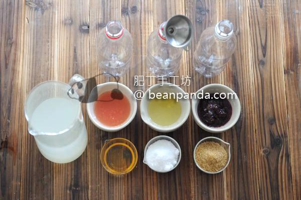 homemade_softdrink_ing02