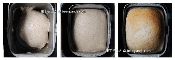 sponge_bread_step_03