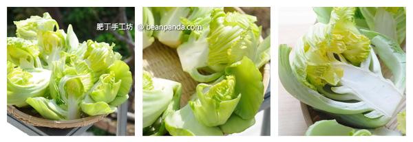 pickled_green_mustard_step02