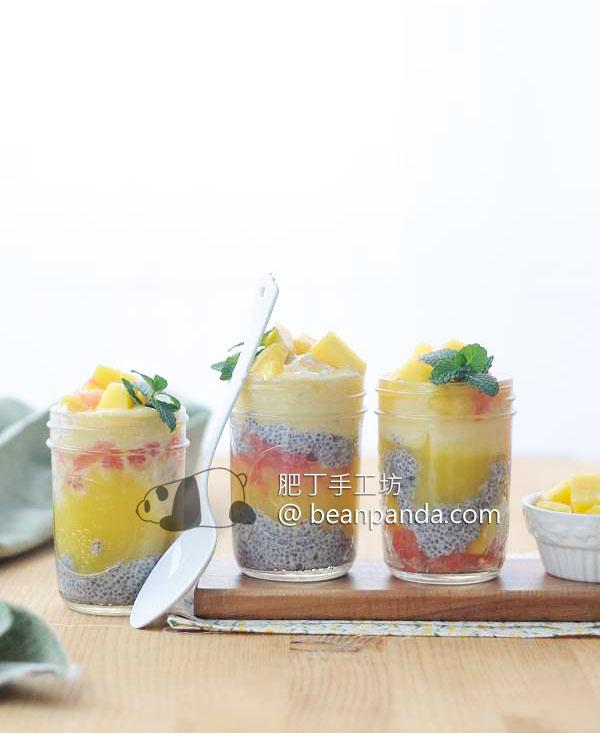 chilled_mango_w_chia_03