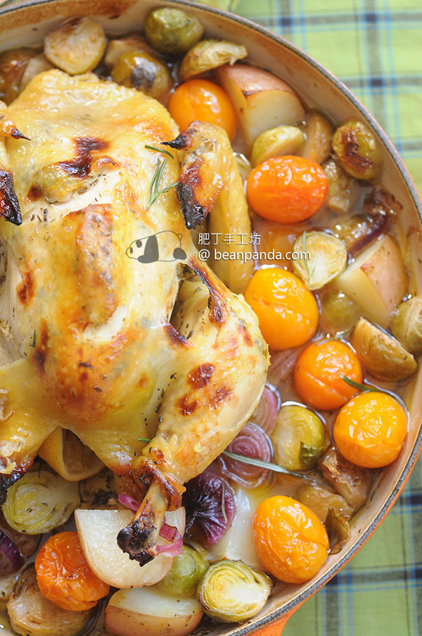 lemon_roasted_chicken_03