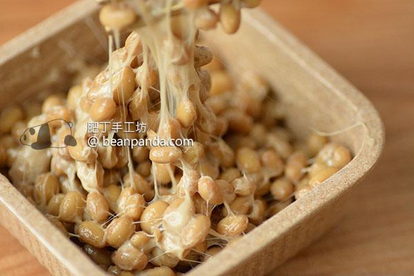 自製納豆 全攻略 How to Make Natto